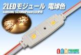 SAMSUNG 2LEDモジュール 電球色
