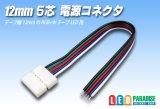 12mm5芯電源コネクタ E-C1-12mm RGBW