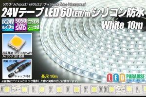 画像1: 24VテープLED60LED/mシリコン防水 白色 10m