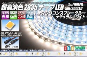 画像1: SSG Ra90+ 2835テープLED 60LED/m 4300K 1-5m
