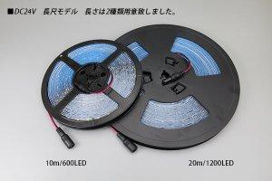画像3: 24V SSG 2835テープLED 60LED/m 3000K 10m/20m