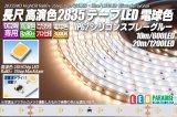 24V SSG 2835テープLED 60LED/m 3000K 10m/20m