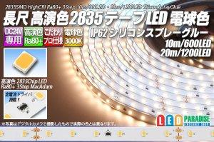 画像1: 24V SSG 2835テープLED 60LED/m 3000K 10m/20m