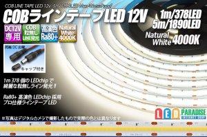 画像1: COBラインテープLED 12V 4000K 1m-5m 高演色Ra80+