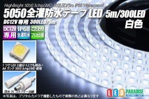 画像1: 全灌防水テープLED 60LED/m IP68 白色 1-5m