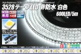 3528テープLED 120LED/m 非防水 白色 5m