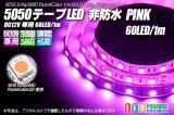 5050テープLED 60LED/m 非防水 ピンク 1m
