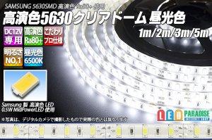 画像1: 高演色5630テープLED 60LED/m クリアドーム 昼光色 6500K 1-5m