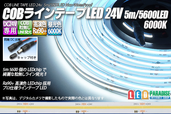 画像1: COBラインテープLED 24V 5m 昼光色6000K 高演色Ra90+